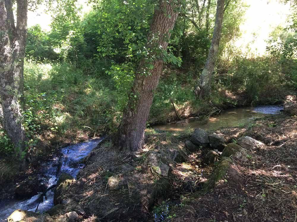 Quinta-de-Seves-Caminhadas-Passeios